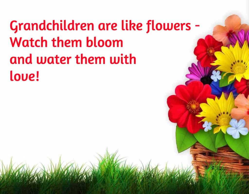 Grandchildren are like flowers - watch them bloom and water them with love!