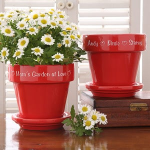 Red Flower Pot