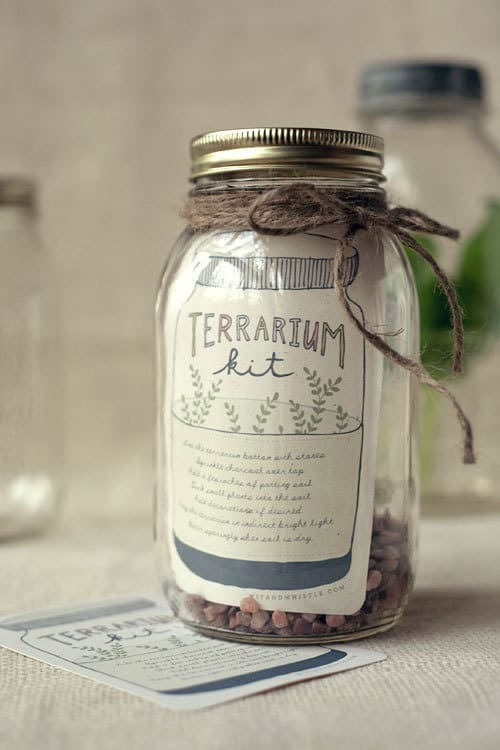 DIY terrarium kit in a mason jar is a fabulous Mother's Day gift.