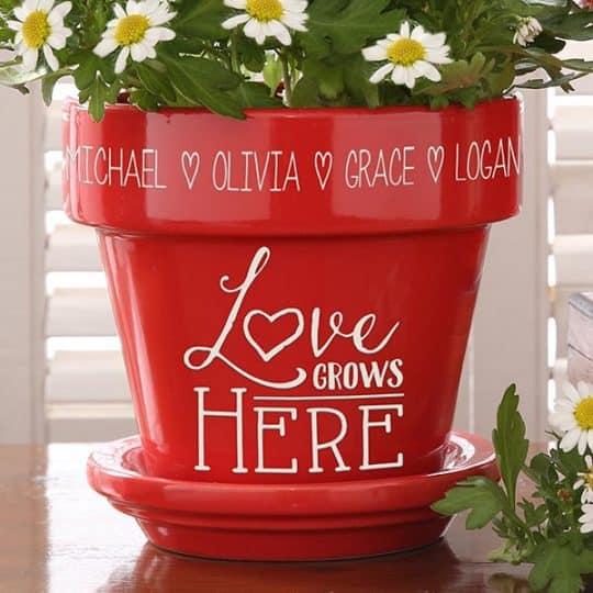 Love Grows Here Flower Pot - Red or Purple