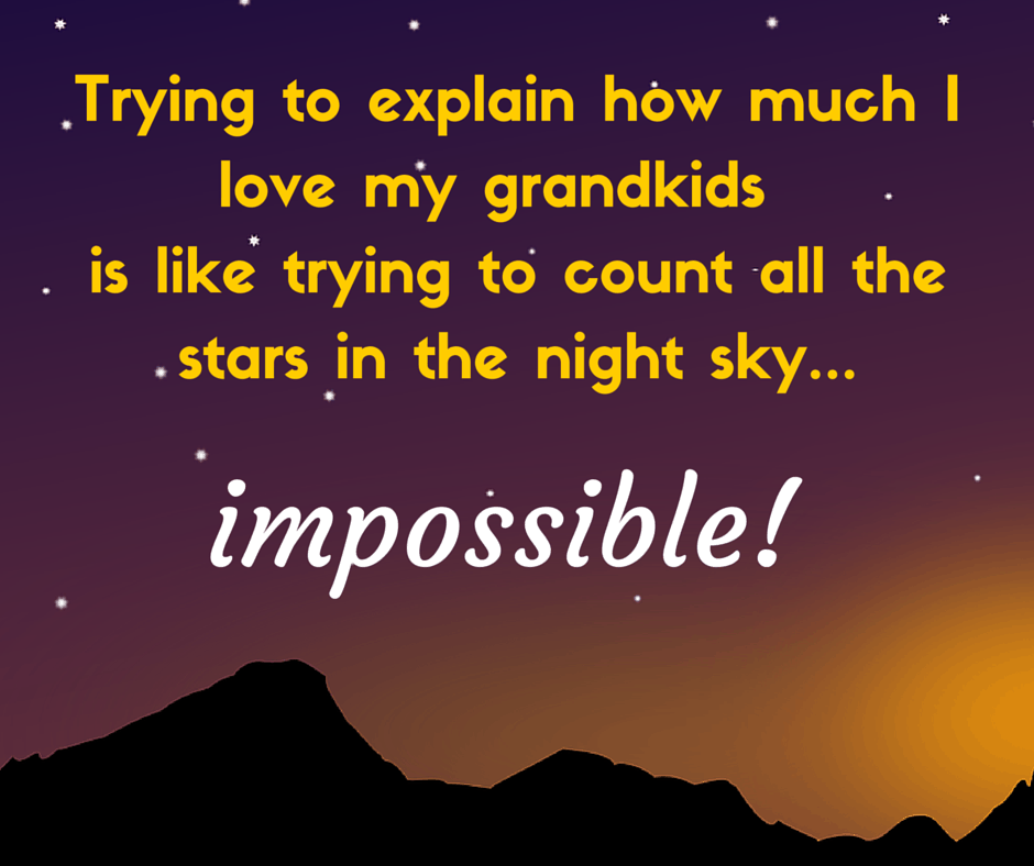 Trying to explain how much I love my grandkids is like trying to count all the stars in the night sky...impossible!