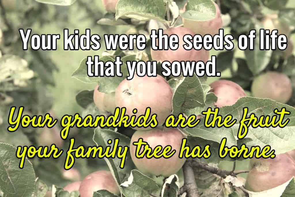 Your kids were the seeds of life that you sowed. Your grandkids are the fruit your family tree has borne.