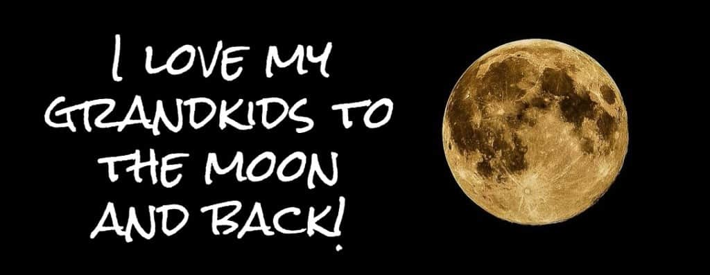 I love my grandkids to the moon and back!