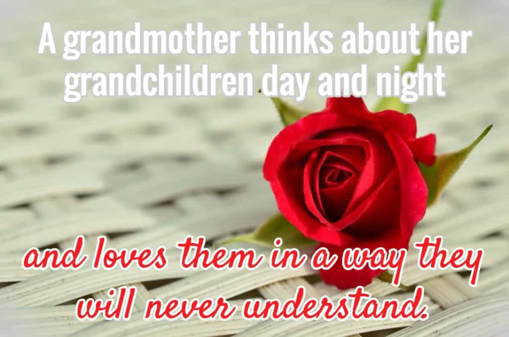 A grandmother thinks about her grandchildren day and night and loves them in a way they will never understand.