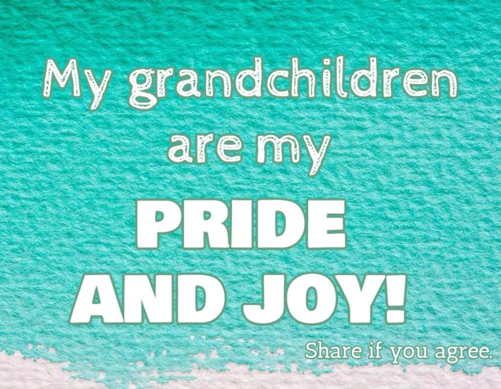 My grandchildren are my pride and joy!