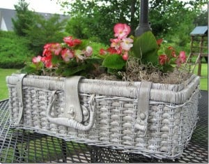 An old picnic basket (check Goodwill or flea markets), a couple of coats of spray paint, some potting soil and plants and you've got a gorgeous planter that will delight Mom on Mother's Day!