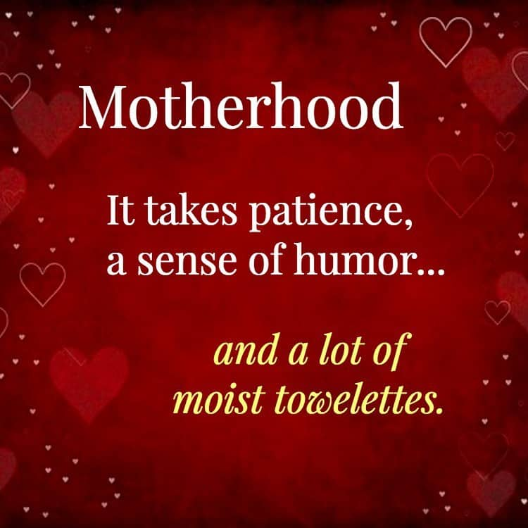 Motherhood – It takes patience, a sense of humor…and a lot of moist towelettes.