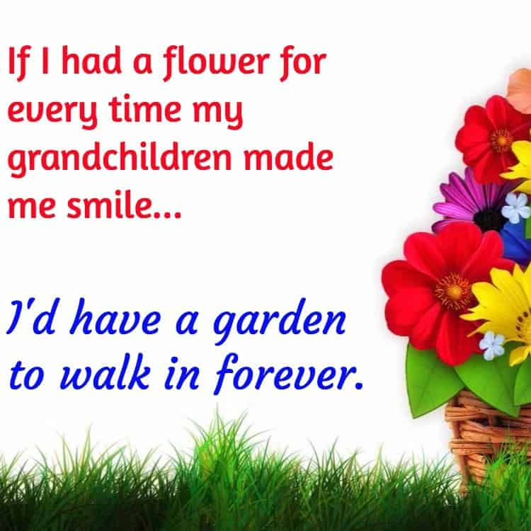 If I had a flower for every time my grandchildren made me smile…I'd have a garden to walk in forever.